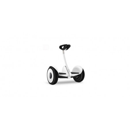 Two wheels self balance scooter 10 Inch - BD-16